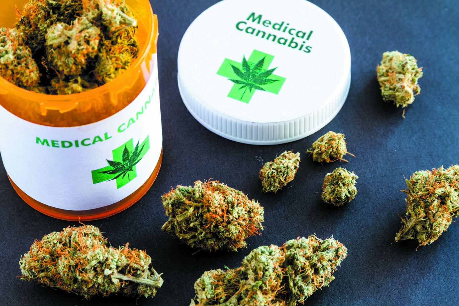 eric schleien medical marijuana bill